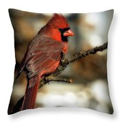 The Male Northern Cardinal Throw Pillow
