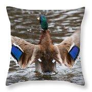 The Mallard Wave Throw Pillow