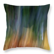 The Man In Yellow Suit Throw Pillow