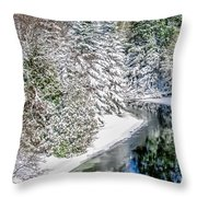 The Manistee River  Throw Pillow