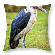 The Marabou Stork In Tanzania. Africa Throw Pillow