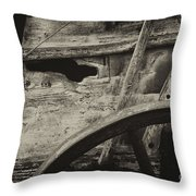 The Marks Of Age Throw Pillow