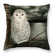 The Marsh At Night Throw Pillow