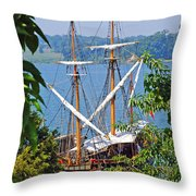 The Maryland Dove Throw Pillow