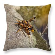 The Mating Game V3 Throw Pillow