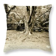 The Matriarch Throw Pillow by Scott Pellegrin