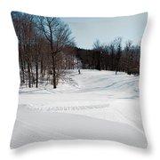 The Mccauley Mountain Ski Area Throw Pillow