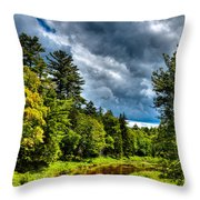 The Meandering Moose River Throw Pillow