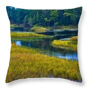 The Meandering Moose River - Old Forge New York Throw Pillow by David Patterson