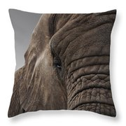 The Meek Mammouth Throw Pillow