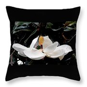New Orleans Metamorphous Of The Southern Magnolia Spring Equinox In Louisiana Throw Pillow