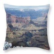 The Mighty Colorado River Throw Pillow