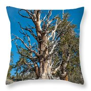 The Mighty Throw Pillow