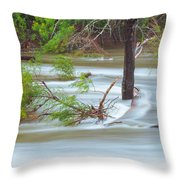 The Milky River Throw Pillow