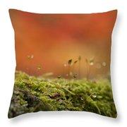 The Miniature World Of Moss  Throw Pillow