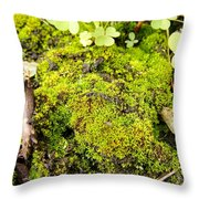 The Miniature World Of The Moss Throw Pillow