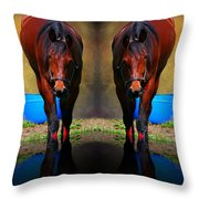 The Mirror Throw Pillow
