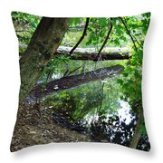The Mirrored Tree Throw Pillow