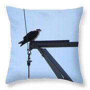 The Mister Throw Pillow
