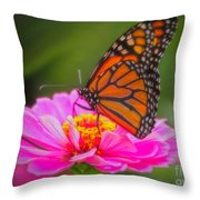 The Monarch's Flower Throw Pillow