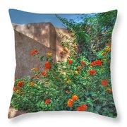 The Monastery Throw Pillow