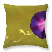The Morning Glory Throw Pillow by Darren Fisher