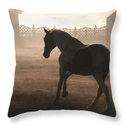 The Morning  Light Throw Pillow
