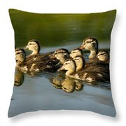 The Morning Rush Throw Pillow
