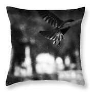 The Morning Steals  Throw Pillow