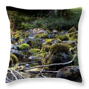 The Moss In The River Stones Throw Pillow