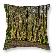 The Mossy Creatures Of The  Old Beech Forest 4 Throw Pillow