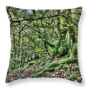 The Mossy Creatures Of The  Old Beech Forest 5 Throw Pillow