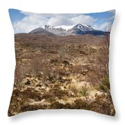 The Munro Of Sgurr Nan Fhir Duibhe Throw Pillow