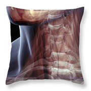 The Muscles Of The Neck Throw Pillow