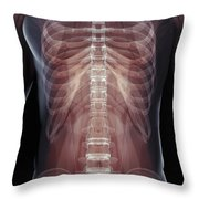 The Muscles Of The Torso Throw Pillow