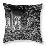The Mystery Within - Black And White Throw Pillow