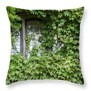 The Mystery Within Throw Pillow