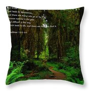 The Narrow Way Throw Pillow