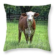 The Neighbor Throw Pillow by Jan Amiss Photography