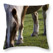The New Forest Pony Throw Pillow