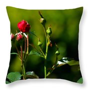 The New Generation Throw Pillow