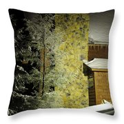 The Night Light Throw Pillow by Lois Bryan
