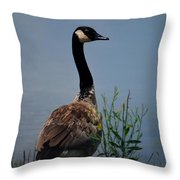 The Noble One Throw Pillow