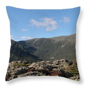 The Northern Presidentials Throw Pillow