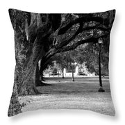 The Oaks Of Audubon Park Throw Pillow