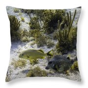 The Odd Couple Throw Pillow