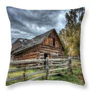 The Ol' Barn Throw Pillow