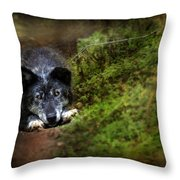 The Old And Not Too Bad Wolf Throw Pillow