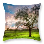 The Old Apple Tree At Dawn Throw Pillow