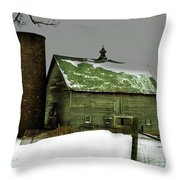 The Old Barn 4 Throw Pillow